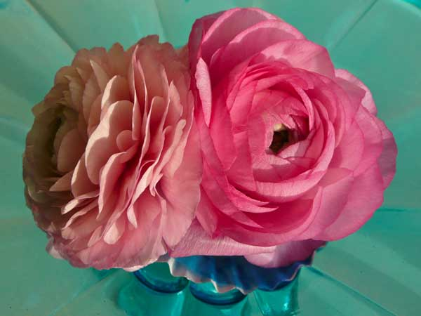 Home Accents Flowers Pink Ranunculus Cupcake