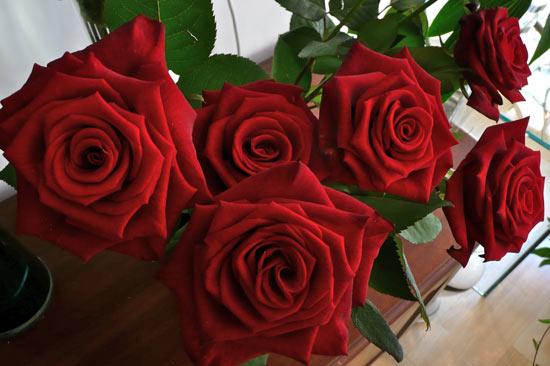 vaalentines day flowers, valentine flowers, valentines evesham